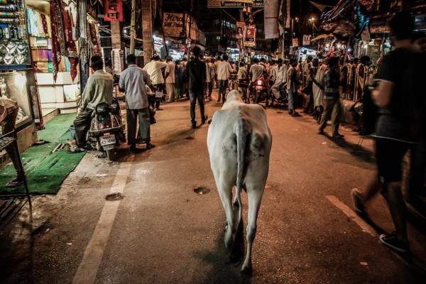 India Varanasi rasarit-90_1024x683