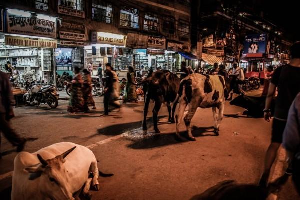 India Varanasi rasarit-92_1024x683