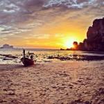 Apus Thailanda