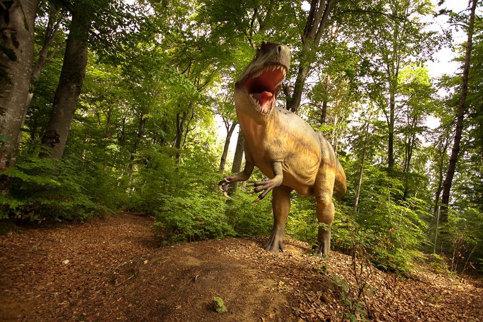 Dino-Parc-Rasnov