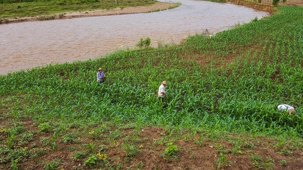 pin-oo-lwin-si-htsipaw-Myanmar-1_1280x720  pin-oo-lwin-si-htsipaw-Myanmar-2_1280x720  pin-oo-lwin-si-htsipaw-Myanmar-3_1280x720  pin-oo-lwin-si-htsipaw-Myanmar-4_1280x720  pin-oo-lwin-si-htsipaw-Myanmar-6_1280x720  pin-oo-lwin-si-htsipaw-Myanmar-16_1280x720  pin-oo-lwin-si-htsipaw-Myanmar-9_1280x720  pin-oo-lwin-si-htsipaw-Myanmar-11_1280x720  pin-oo-lwin-si-htsipaw-Myanmar-14_1280x720  pin-oo-lwin-si-htsipaw-Myanmar-17_1204x800  pin-oo-lwin-si-htsipaw-Myanmar-20_1280x720  pin-oo-lwin-si-htsipaw-Myanmar-31_1181x800  pin-oo-lwin-si-htsipaw-Myanmar-43_1280x720  pin-oo-lwin-si-htsipaw-Myanmar-36_1280x720  pin-oo-lwin-si-htsipaw-Myanmar-38_1280x720  pin-oo-lwin-si-htsipaw-Myanmar-58_1280x720  pin-oo-lwin-si-htsipaw-Myanmar-63_1280x720  pin-oo-lwin-si-htsipaw-Myanmar-67_1280x720  pin-oo-lwin-si-htsipaw-Myanmar-69_1280x720